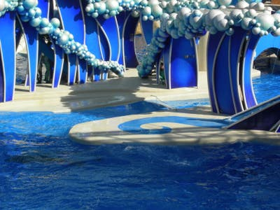 Sea World Orlando