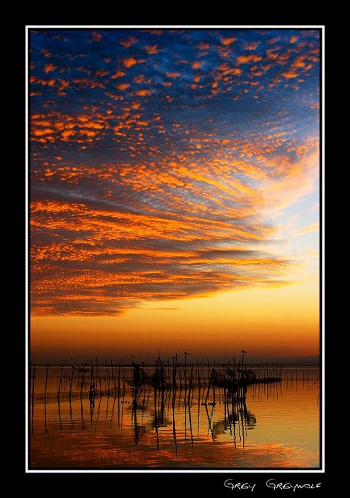 Red Sky At Morning in Albufera Natural Park