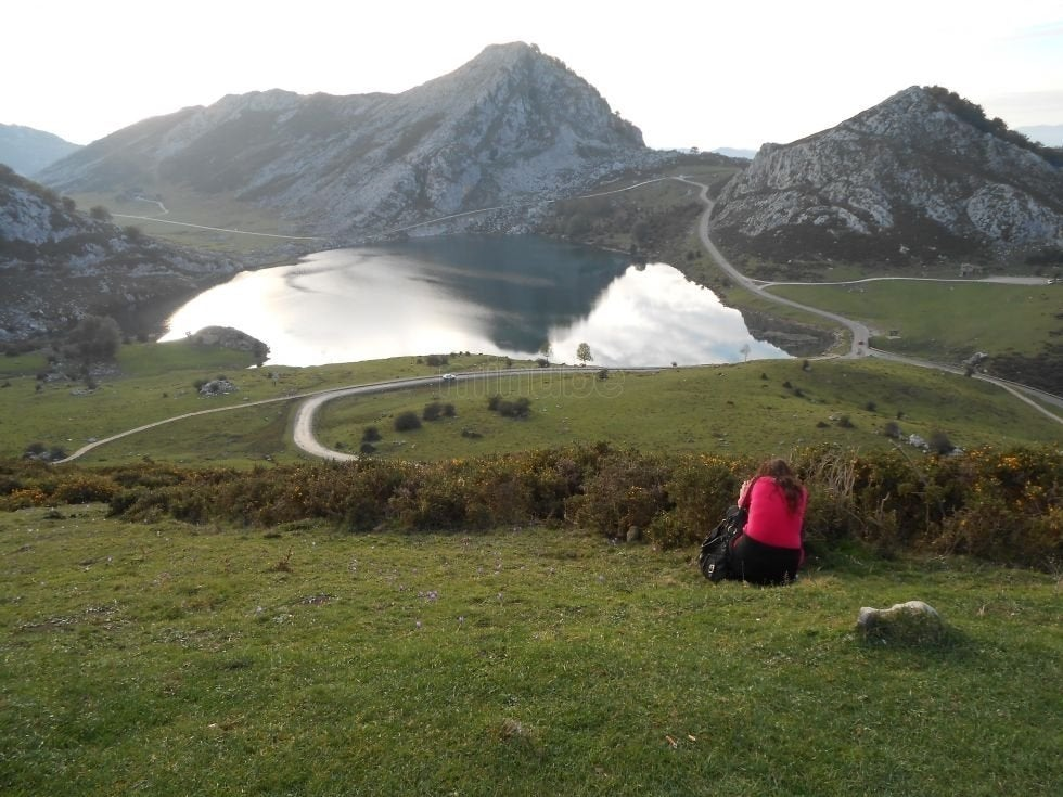 Tundra in The Lakes of Covadonga - Enol and Ercina lakes