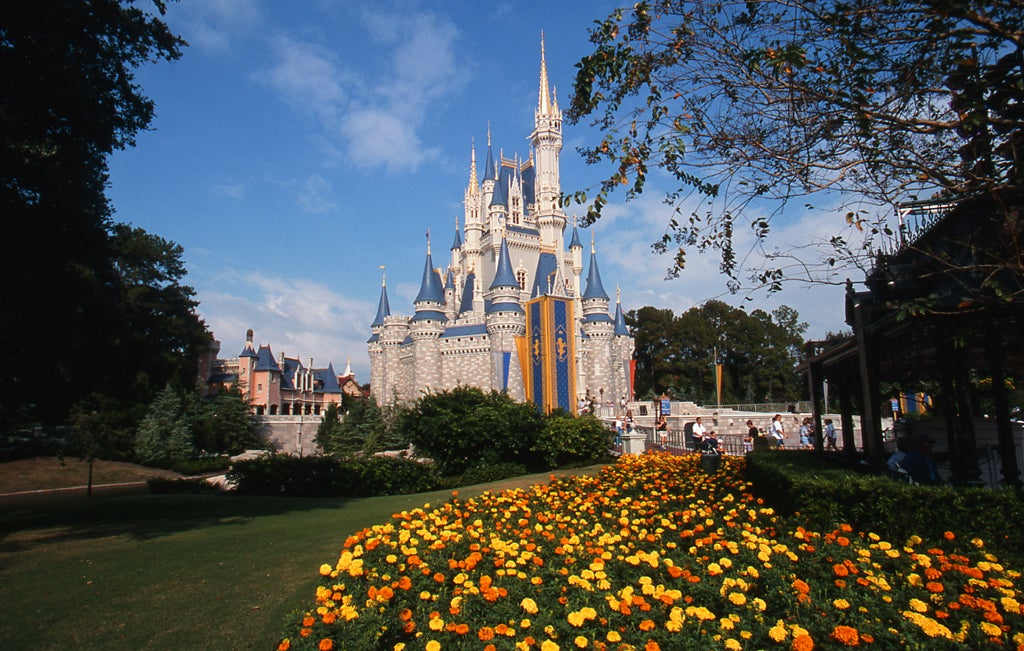 Amarillo en Walt Disney World