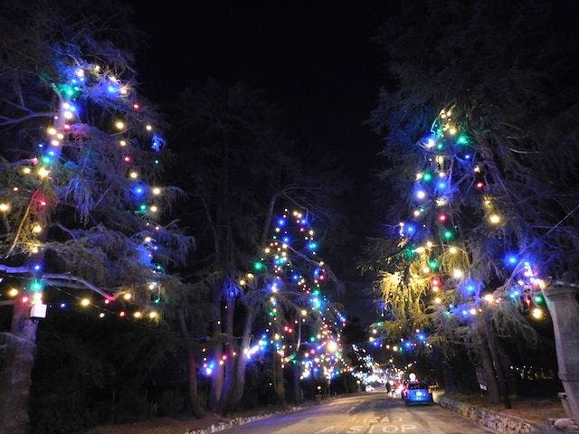 Christmas Tree Lane In Altadena 1 Reviews And 1 Photos