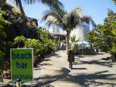 Beach Bar Playa Torviscas