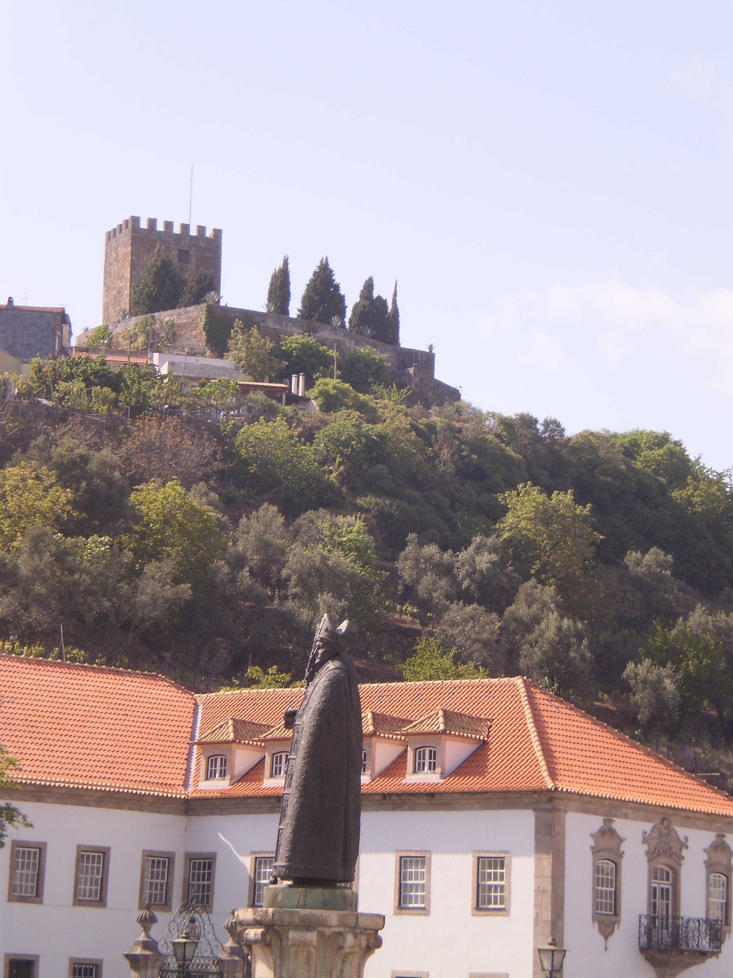 Statue of D. Miguel Portugal