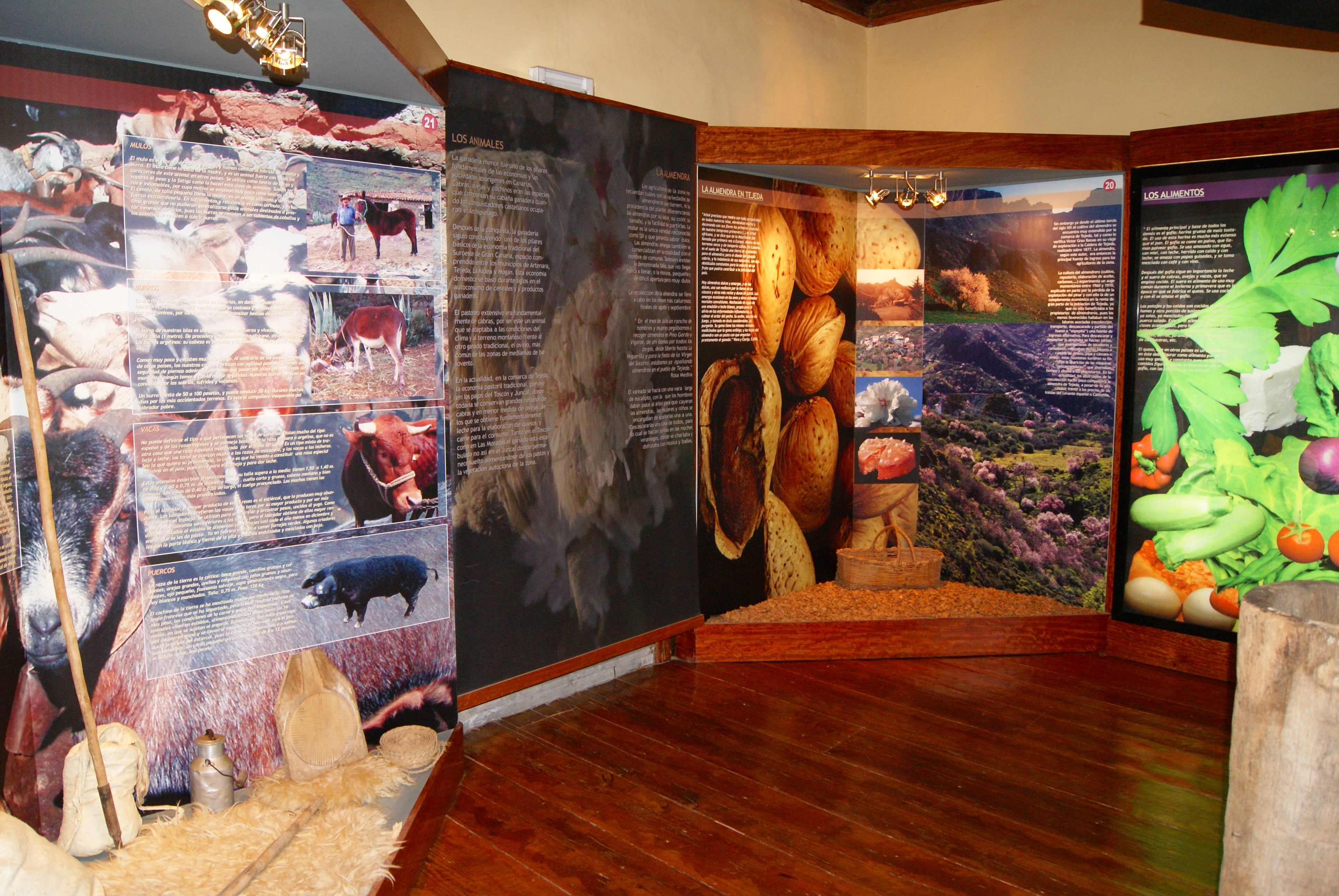 Stanza Traditions Museum of Tejeda
