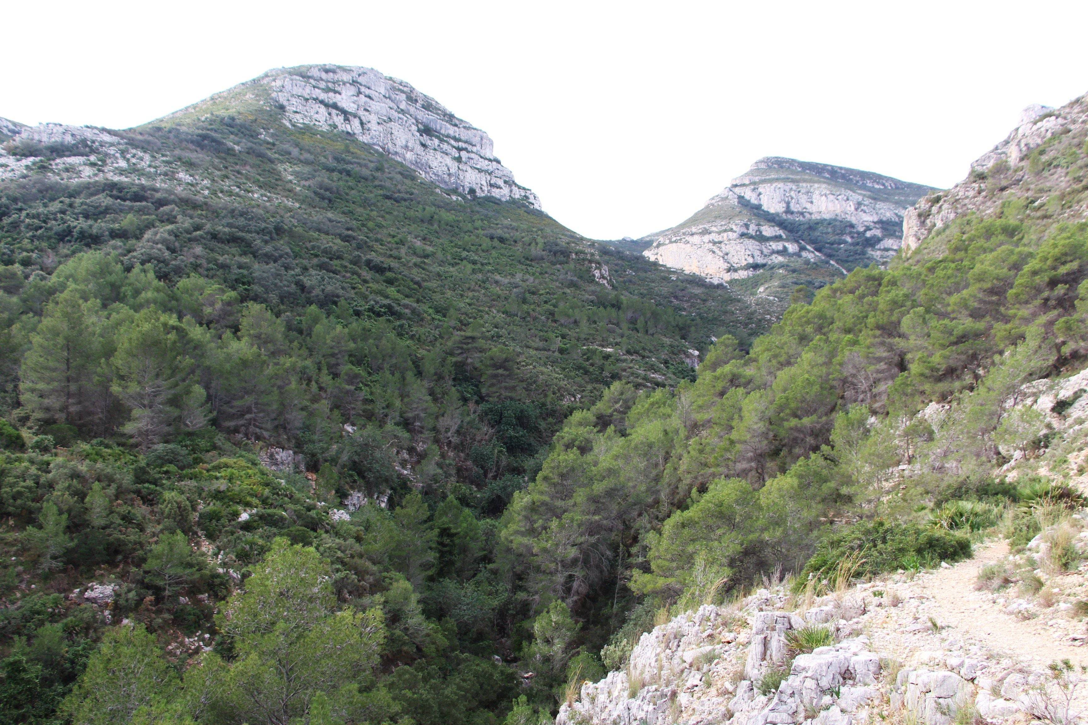 Canyon in Ruta La Font de Lloret