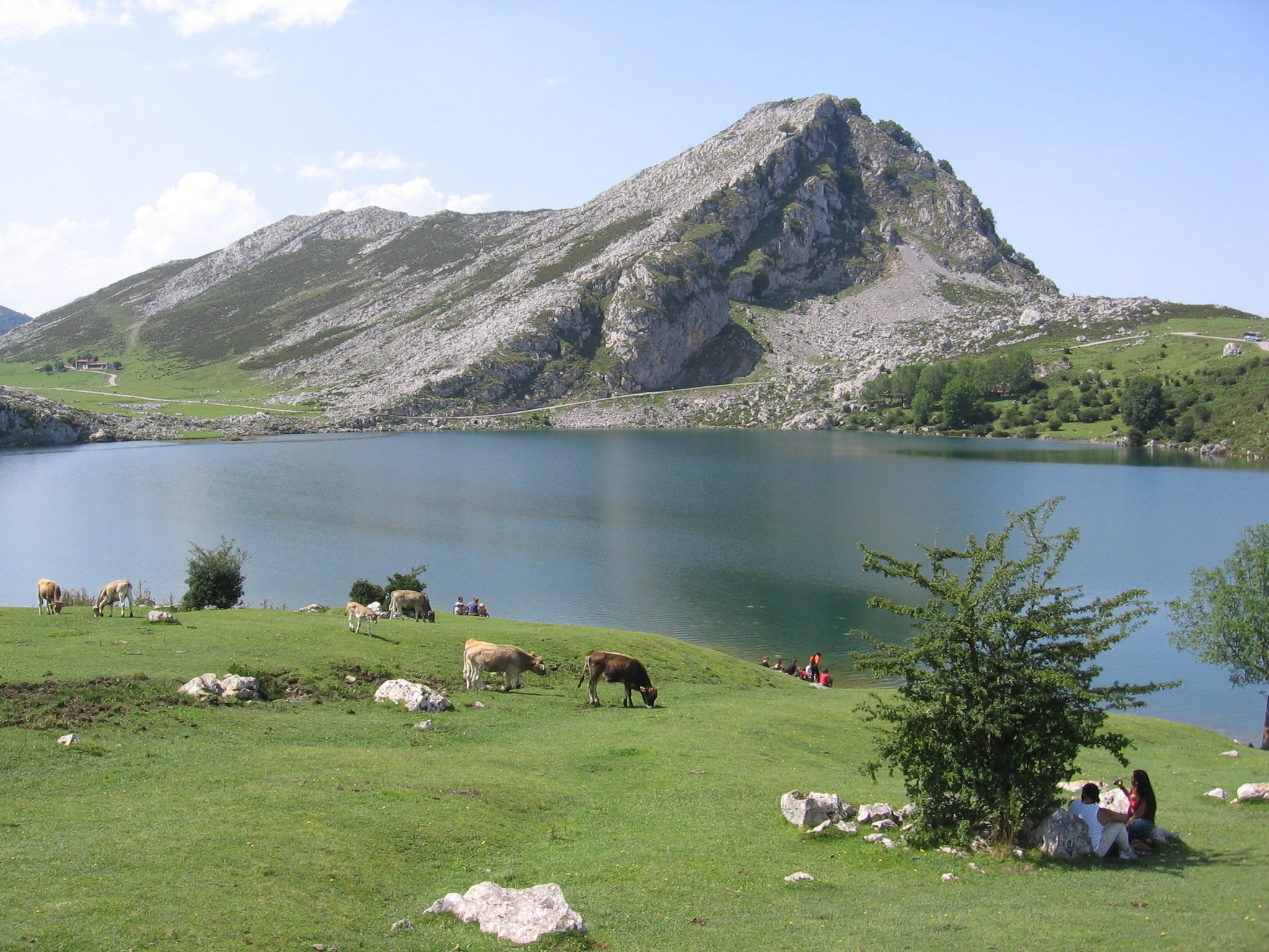 Bay in The Lakes of Covadonga - Enol and Ercina lakes