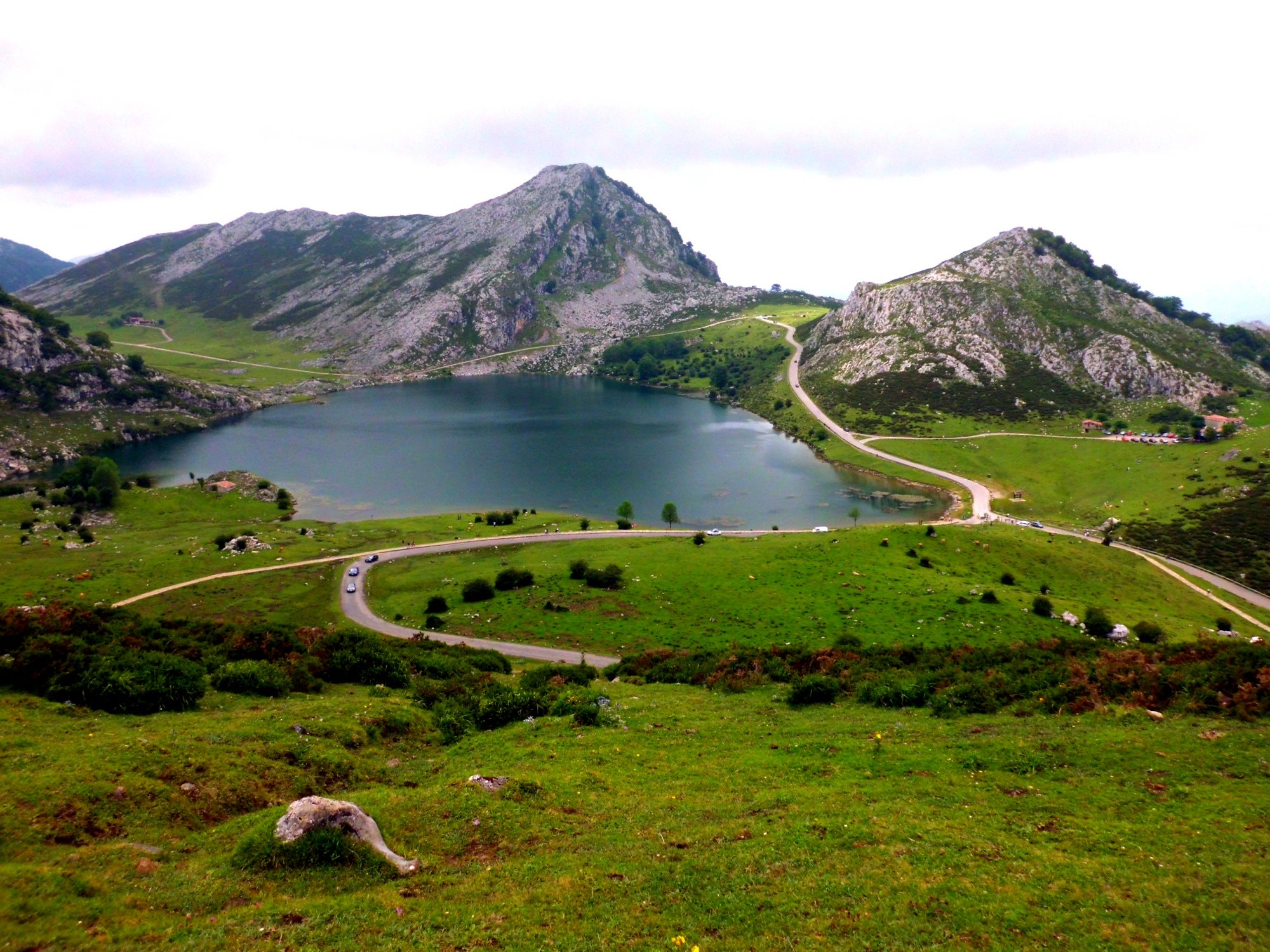 Tarn in The Lakes of Covadonga - Enol and Ercina lakes