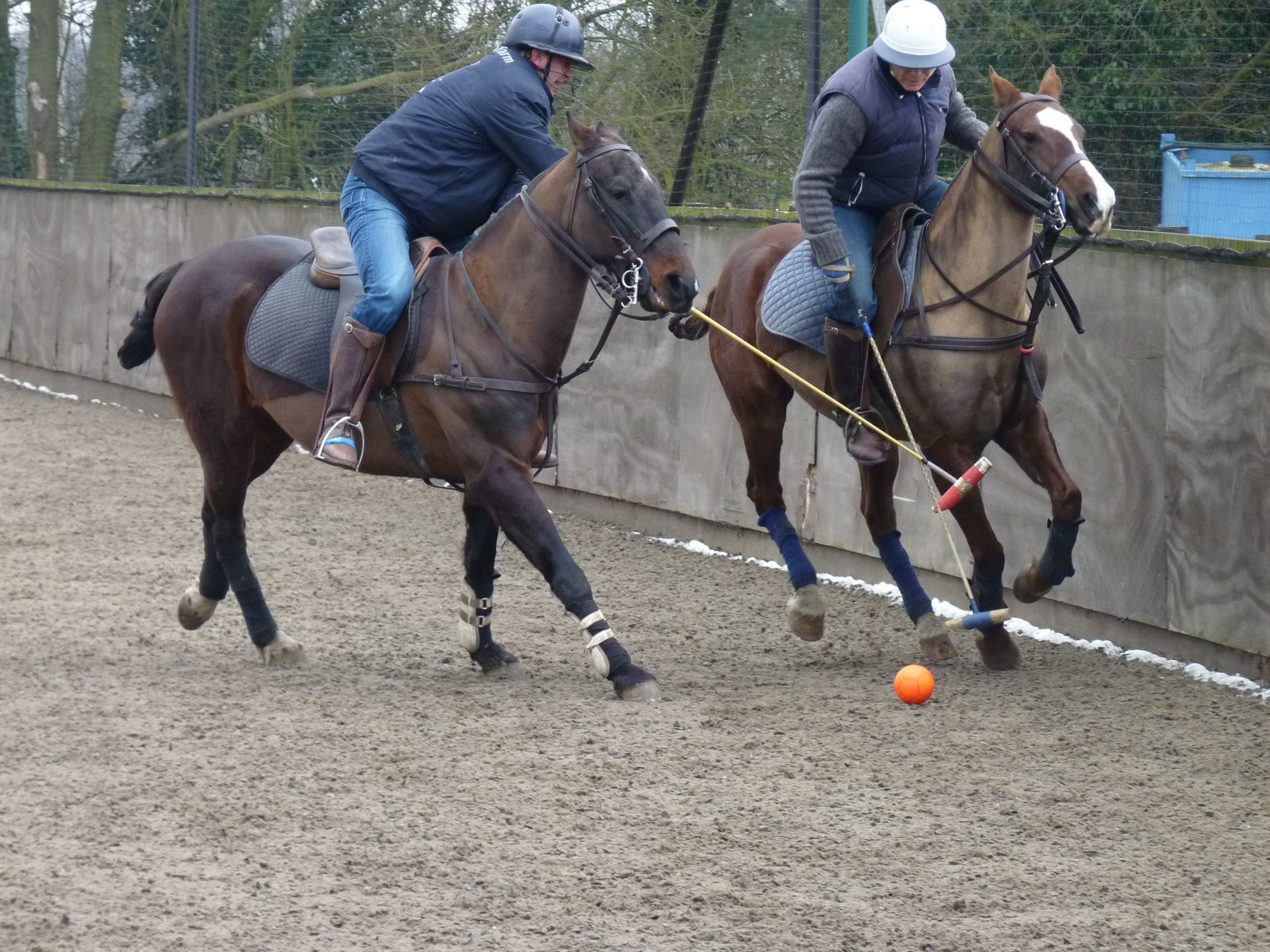 MHF Polo Club & Polo School