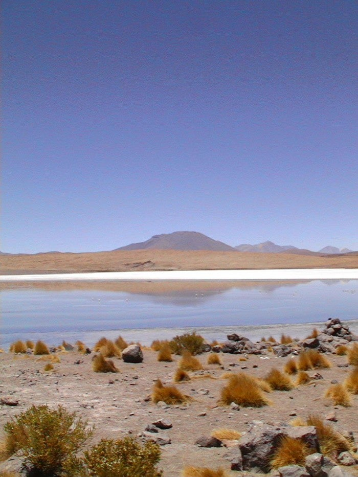Playa en Laguna Colorada