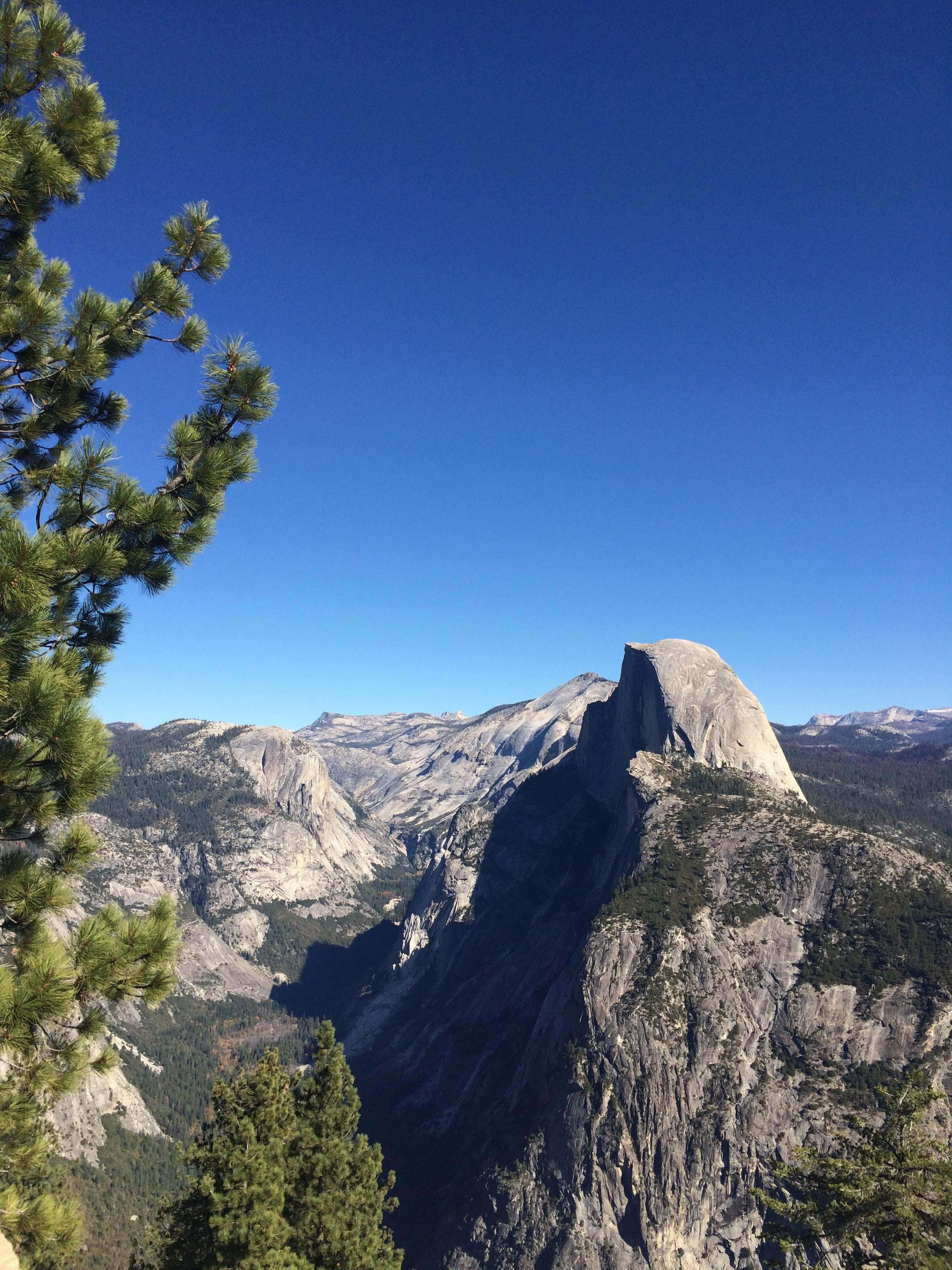 Naturaleza en Glacier Point