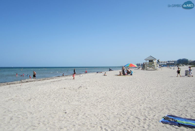 Shore in Crandon Beach