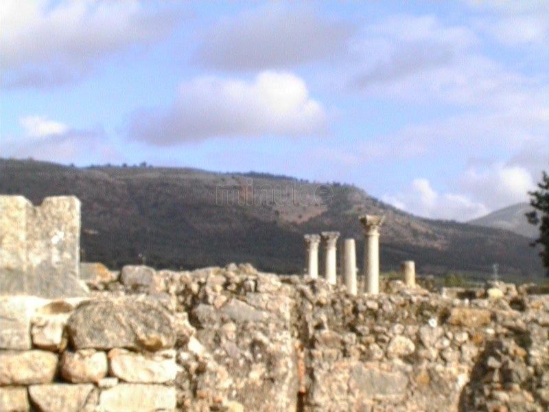 Pared en Volubilis
