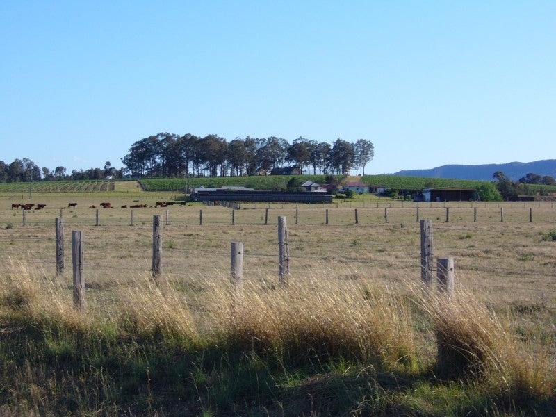 Campo de tiro en Hunter Valley