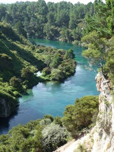Bungy on the Waikato River