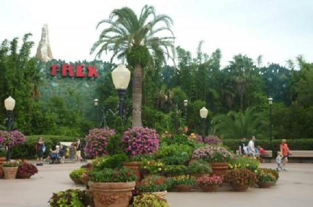 Parque en Downtown Disney Area