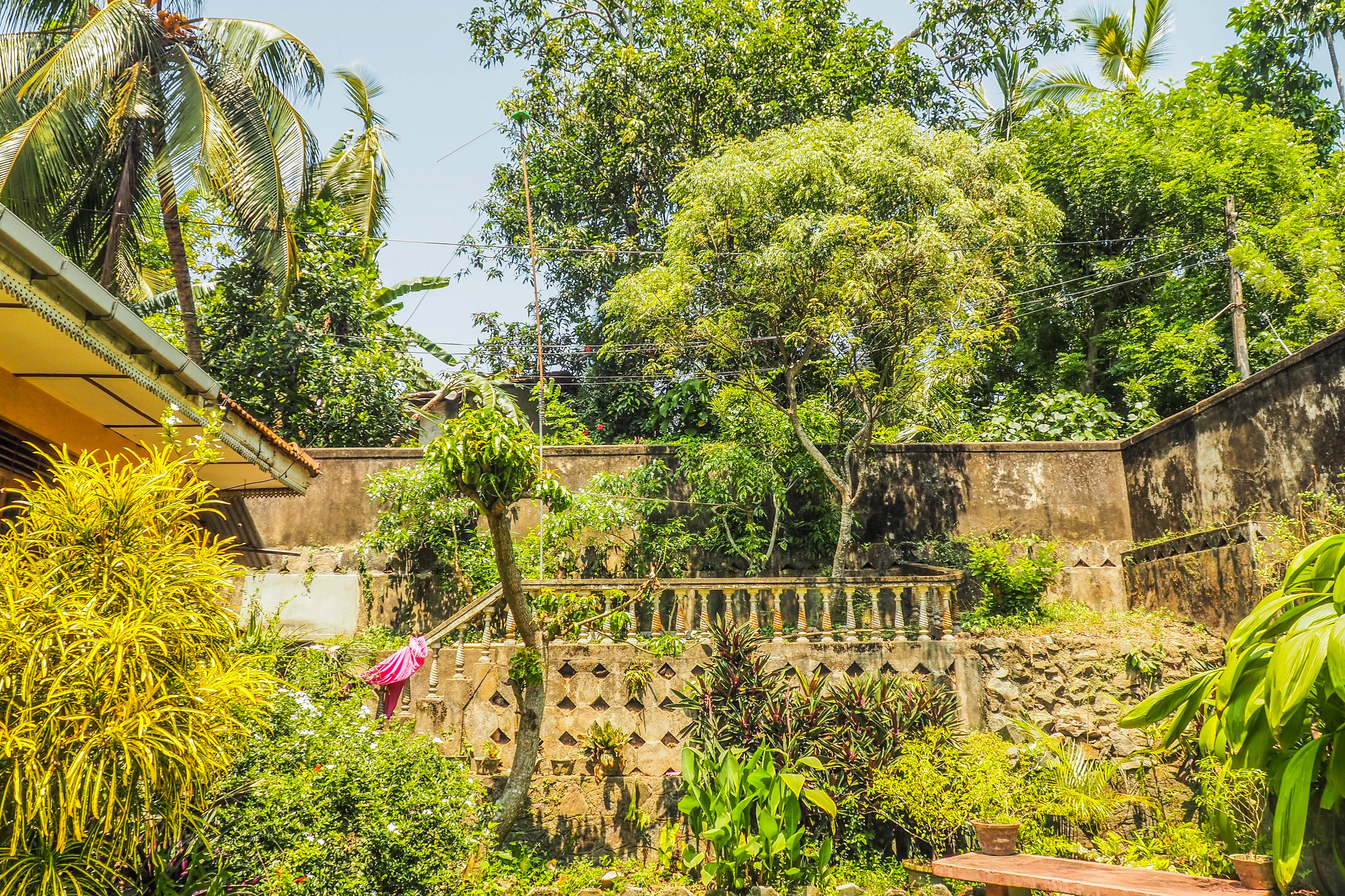 Green in Paradise Hostel Galle