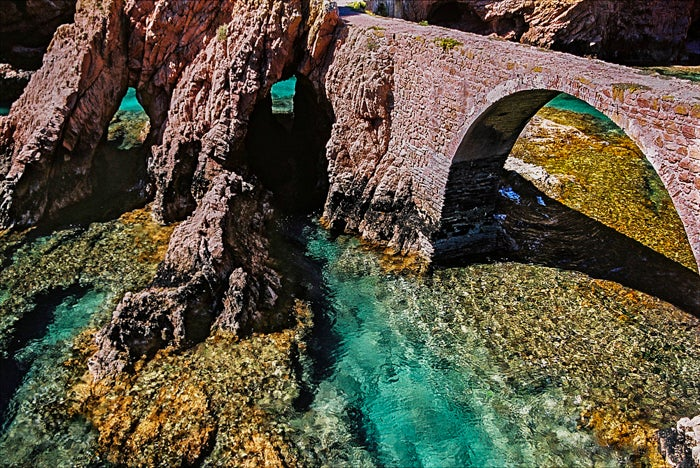 Berlengas Islands Natural Reserve