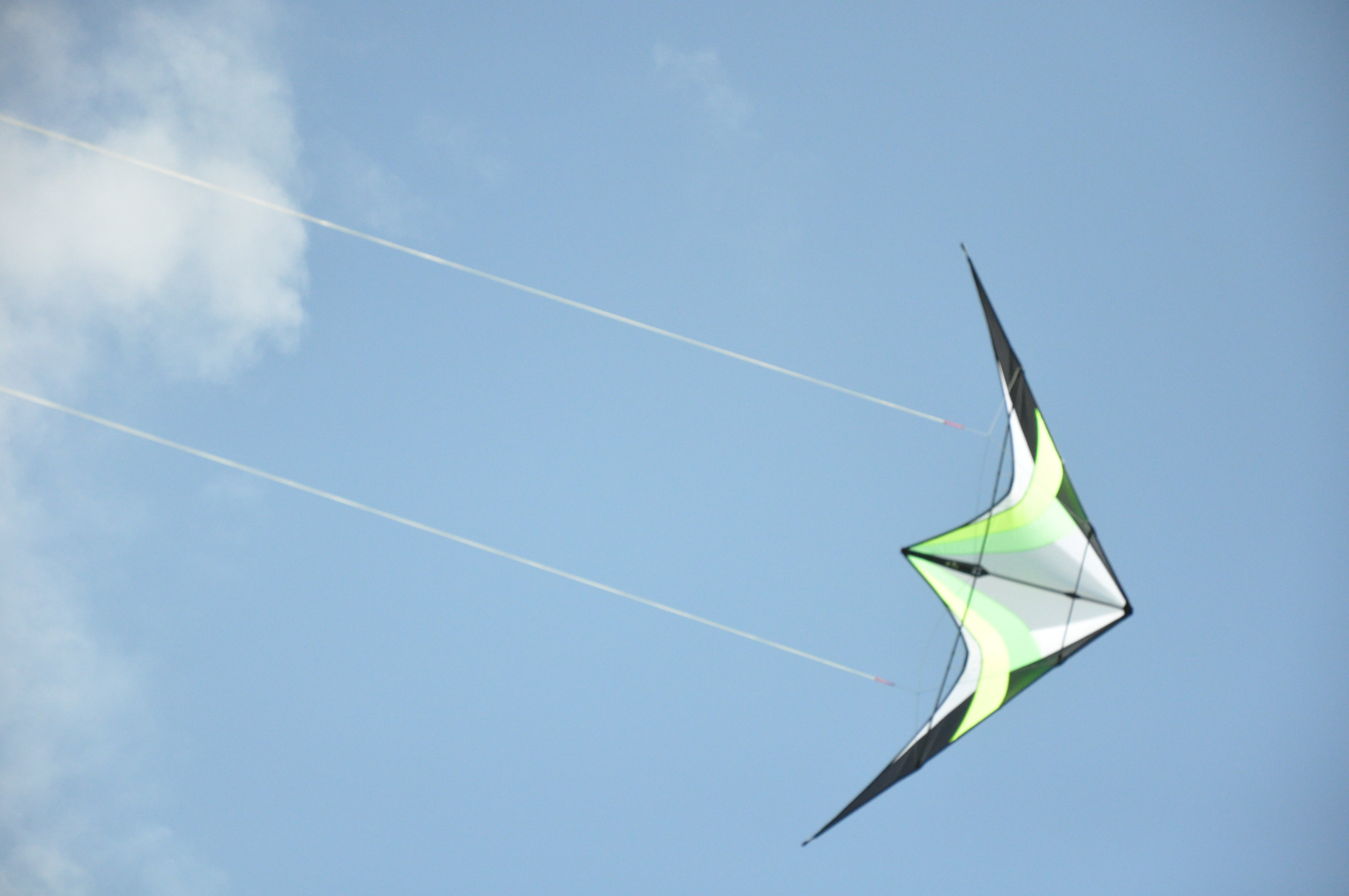 Kite on the plateau of Ally
