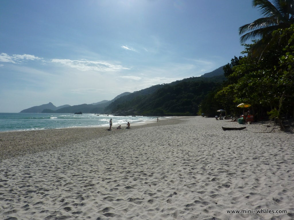 Resort en Ilha Grande