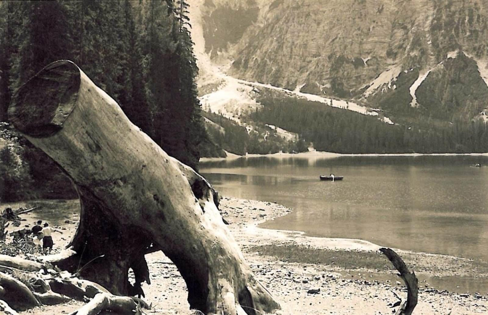 Animal en Lago de Braies