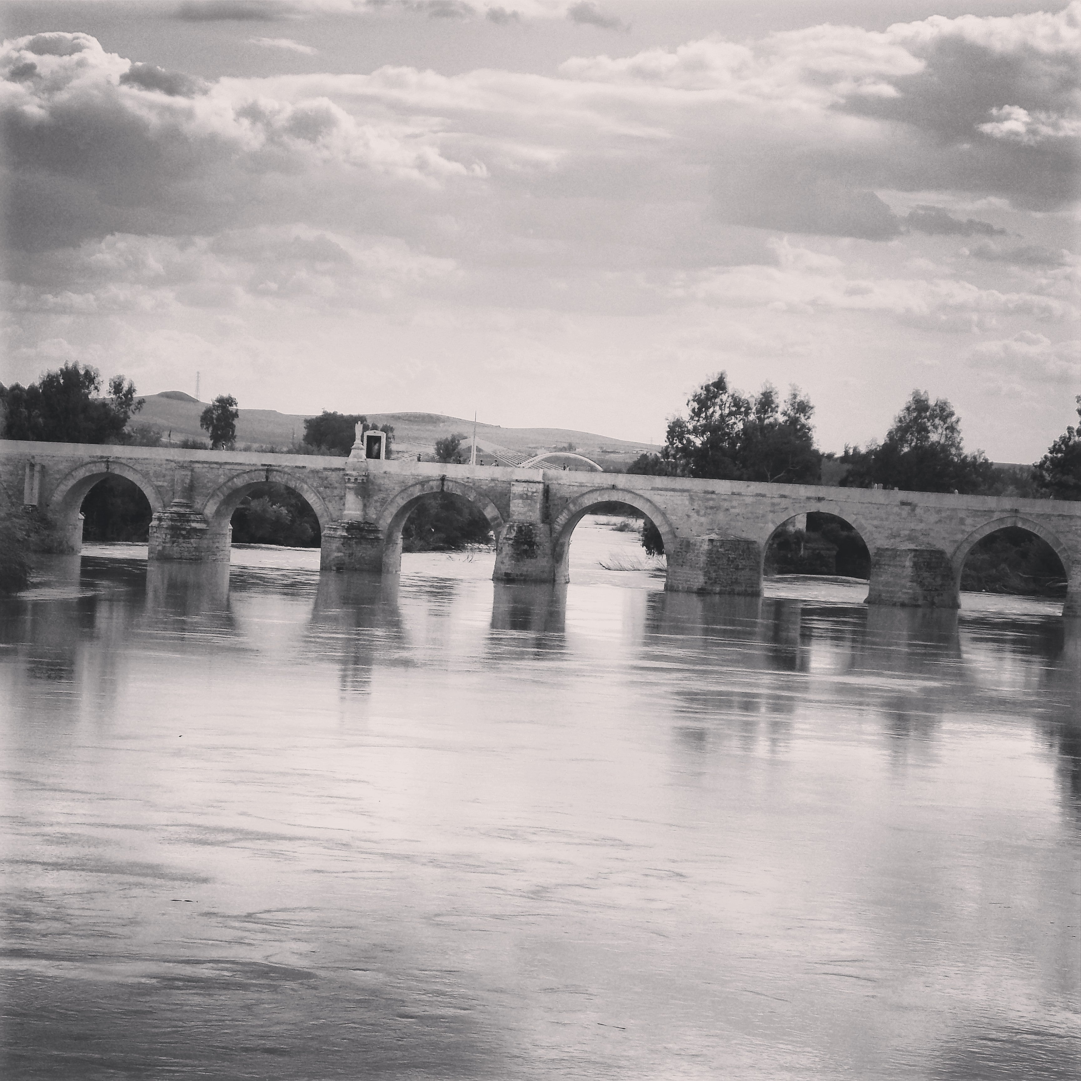White in Roman Bridge of Córdoba