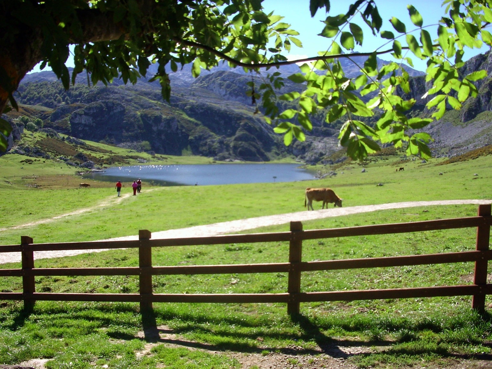 Furniture in The Lakes of Covadonga - Enol and Ercina lakes