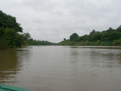 Excursion by the Gambia River in Wassadou