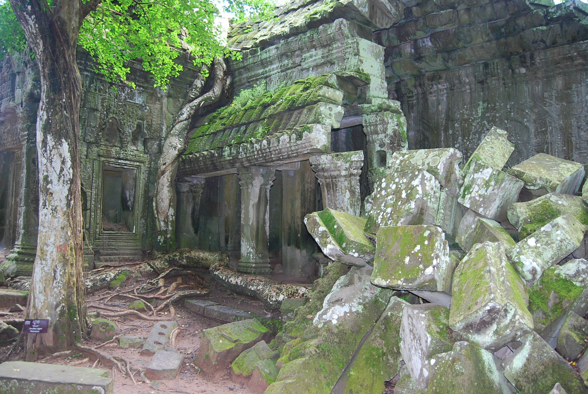 Barranco en Ta Prohm