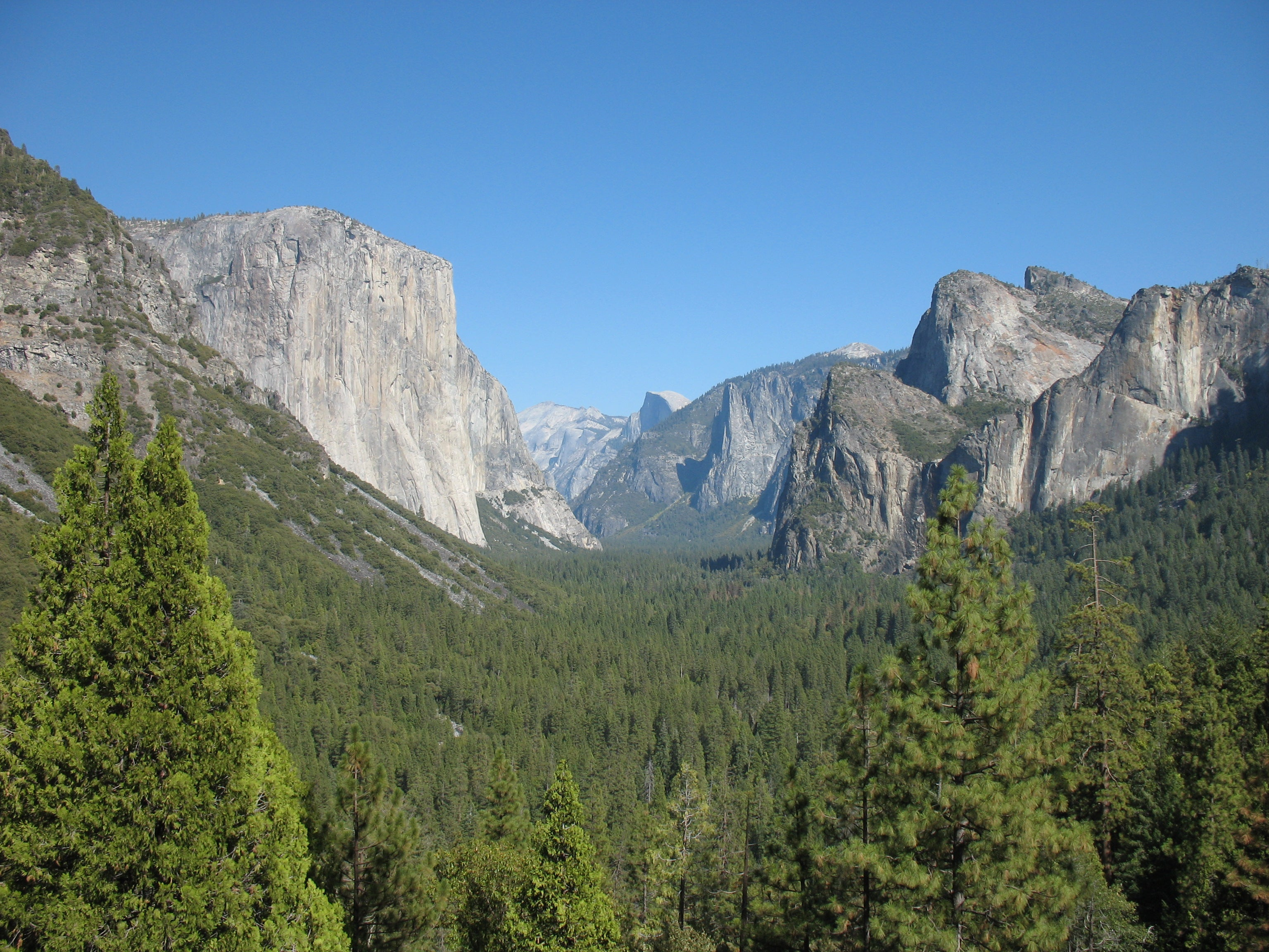 Naturaleza en Tunnel View