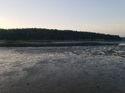 Thomas Point Beach