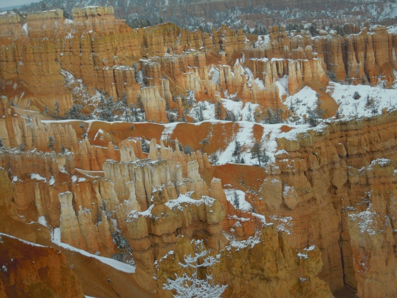 Pared en Bryce Canyon