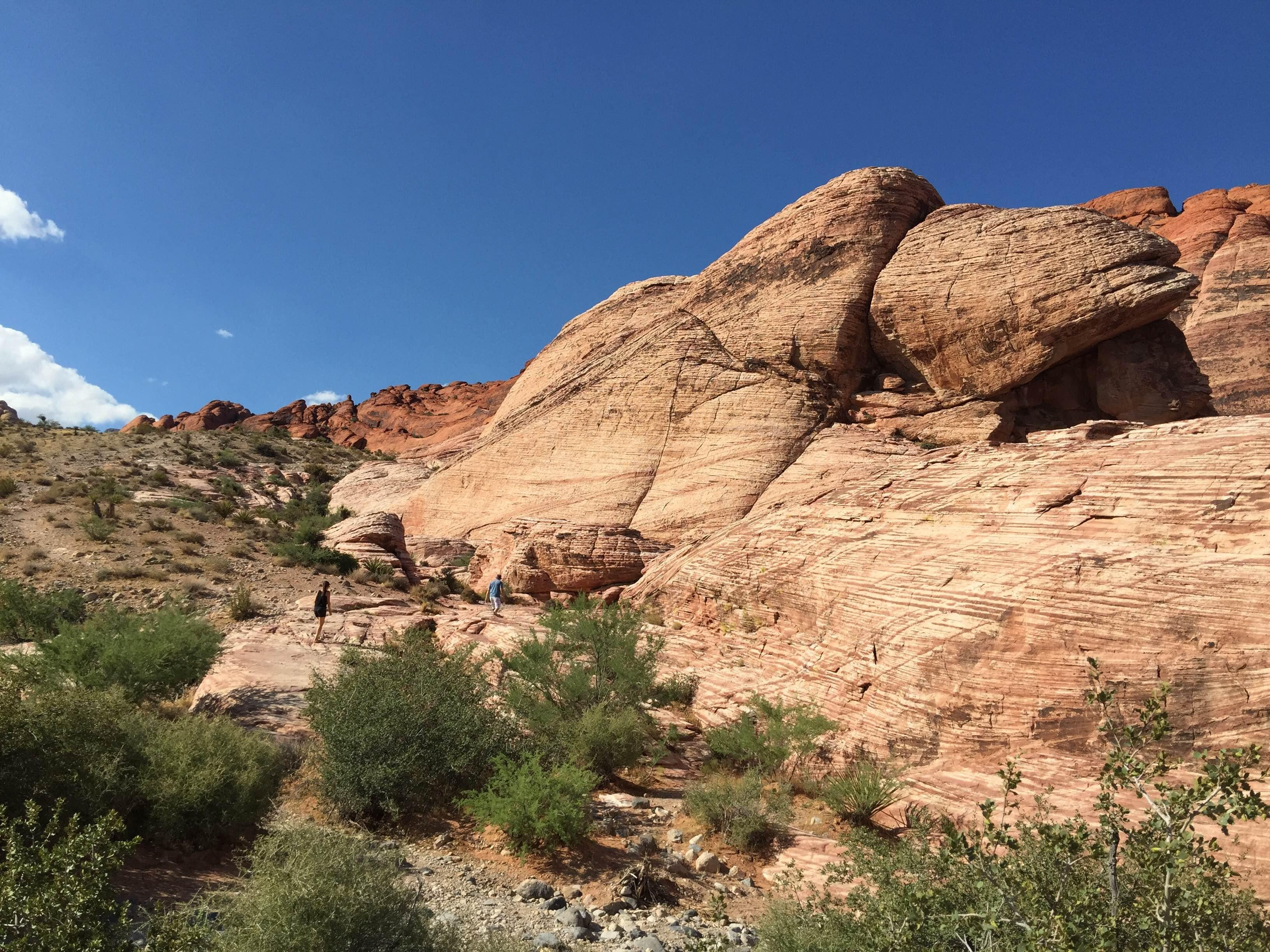 Afloramiento en Red Rock Canyon National Conservation Area