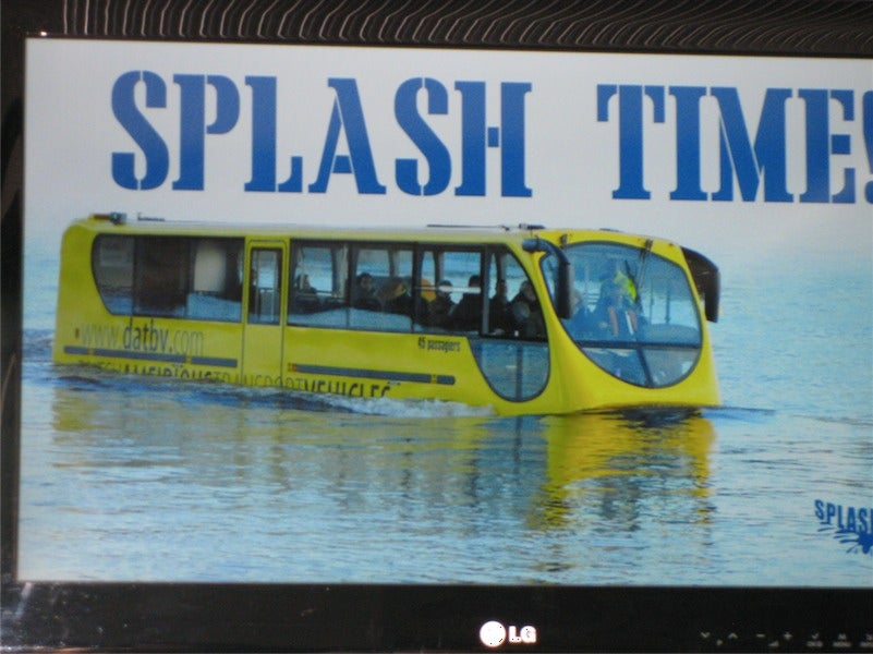 Splash Tours