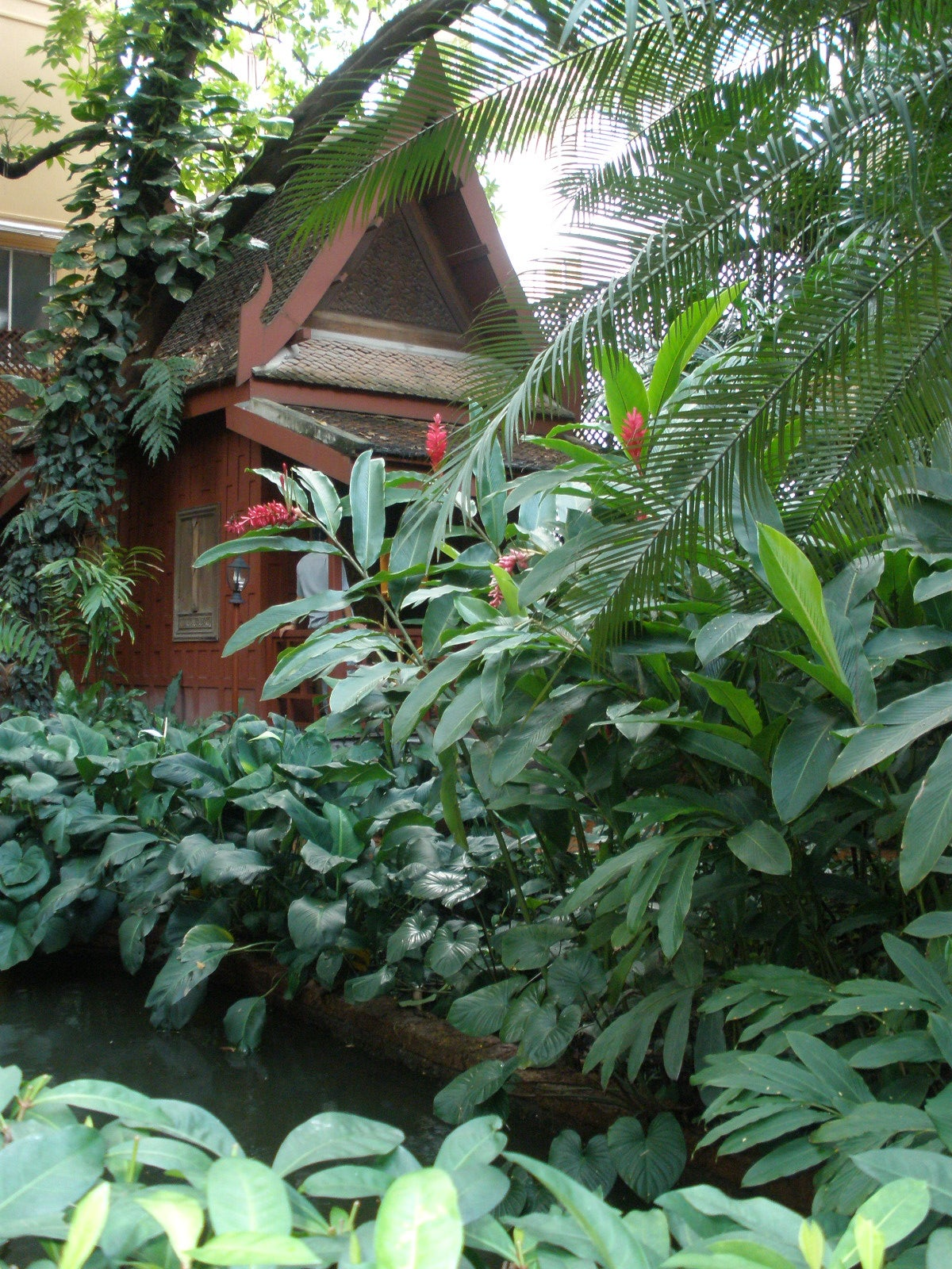 Jardín en Casa de Jim Thompson