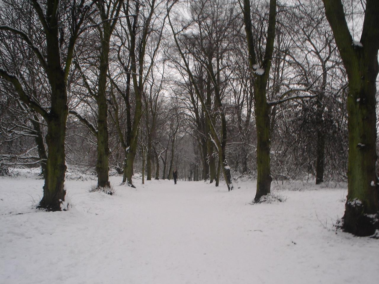 Clima en Parque de Hampstead Heath