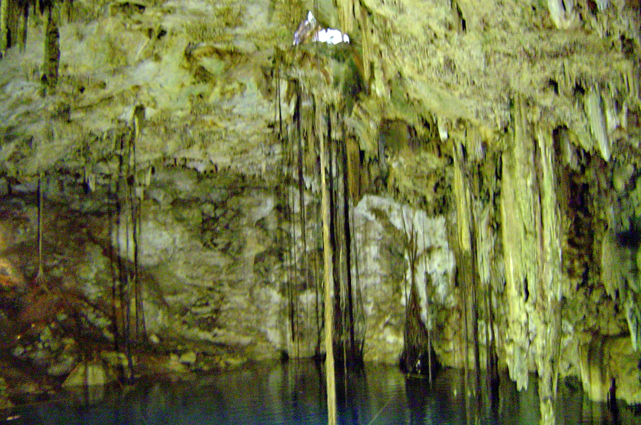 Humedal en Cenote Dzitnup/Cenote Xkekén