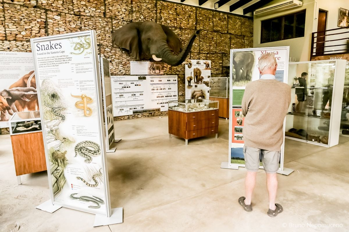 Addo Elephant National Park Museum