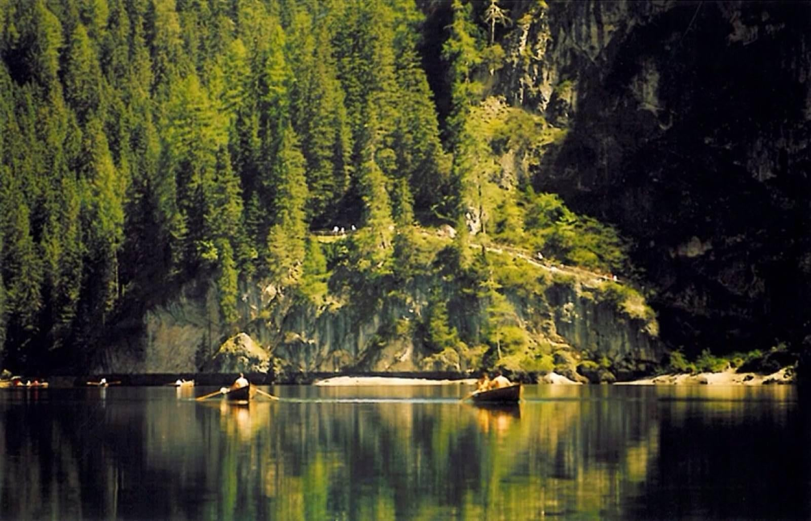 Bosque en Lago de Braies