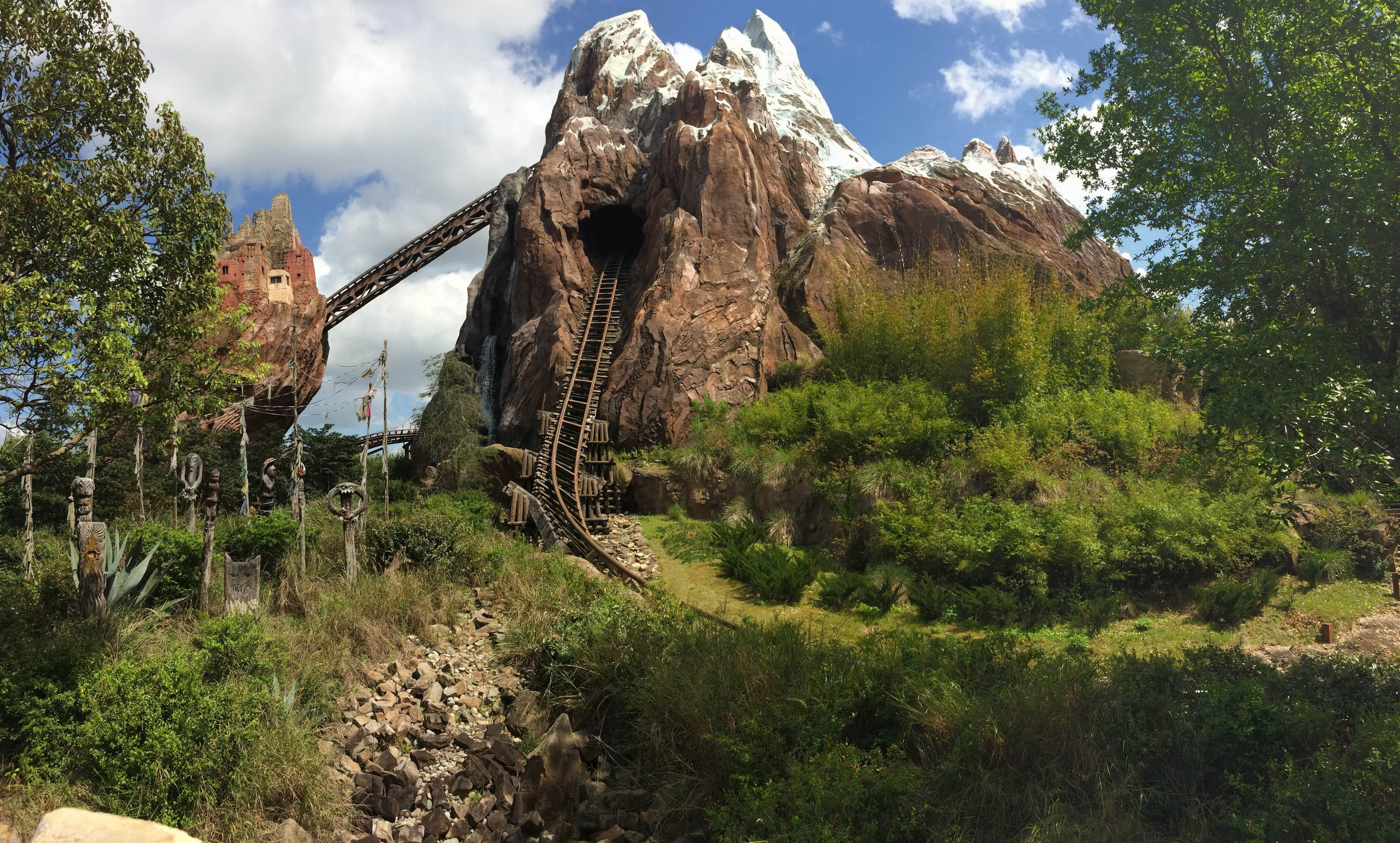 Piedra en Disney Animal Kingdom