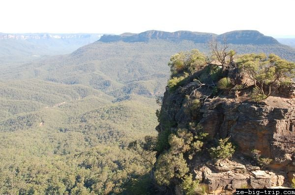 Selva en Parque nacional Blue Mountains