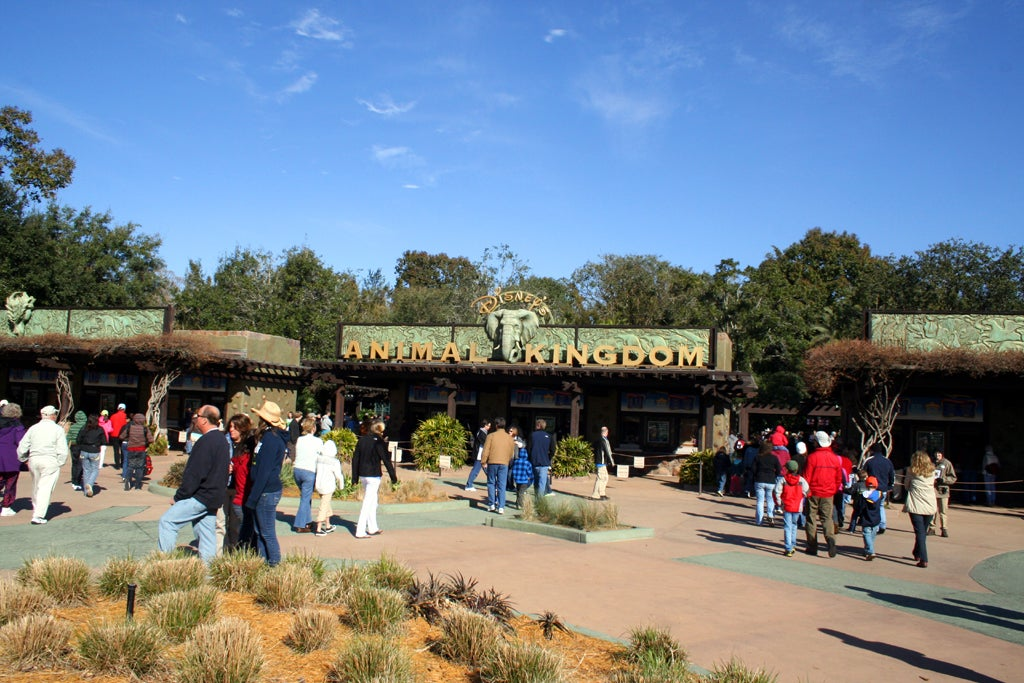 Ciudad en Disney Animal Kingdom