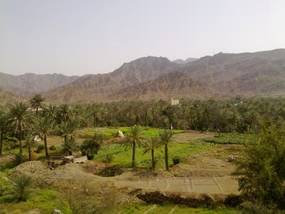 The Interior of the Sutanate of Oman