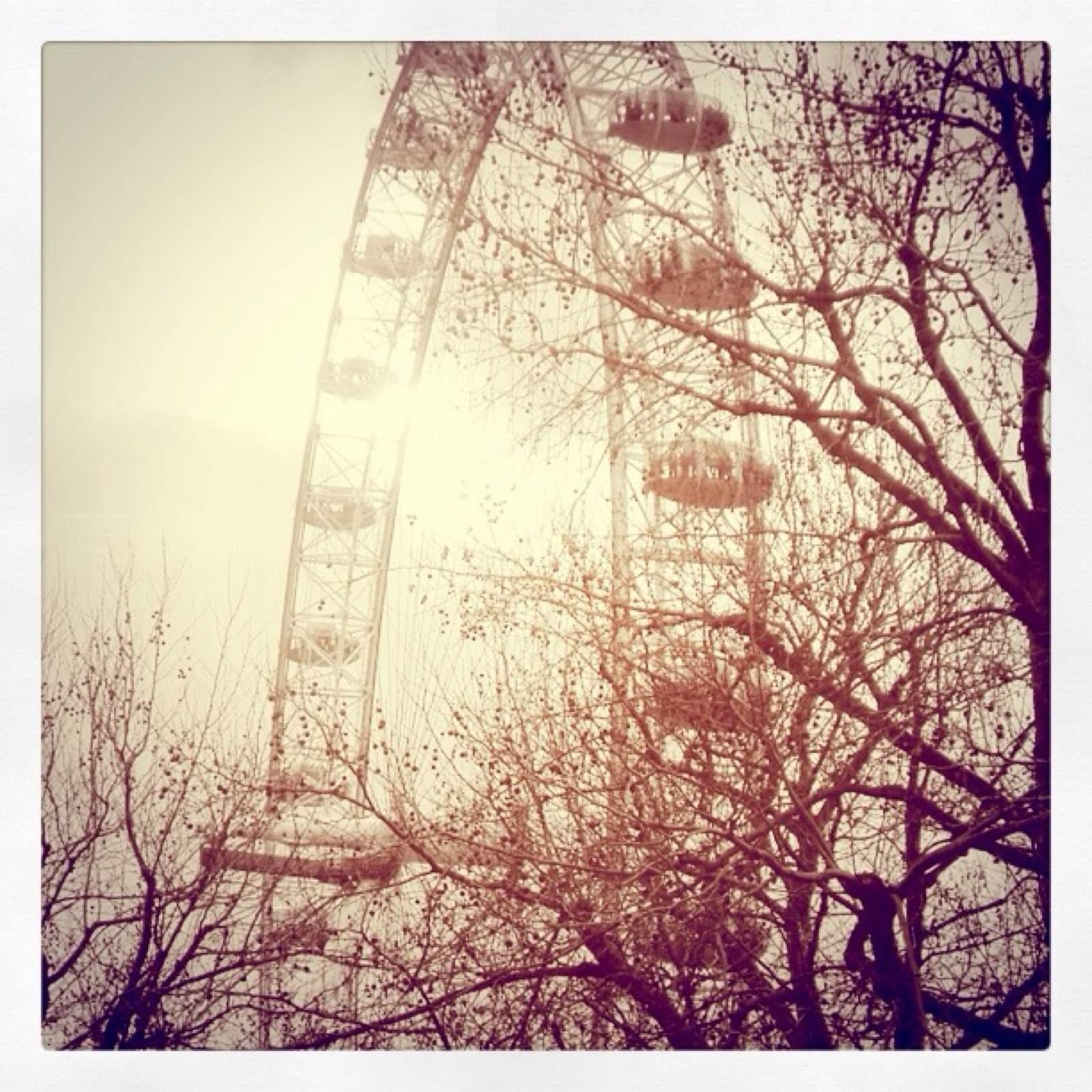 Bosque en London Eye
