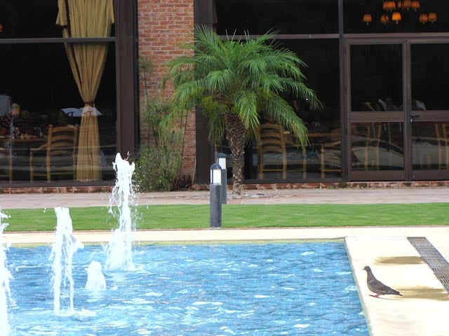 Sheraton Pilar Hotel & Convention Center
