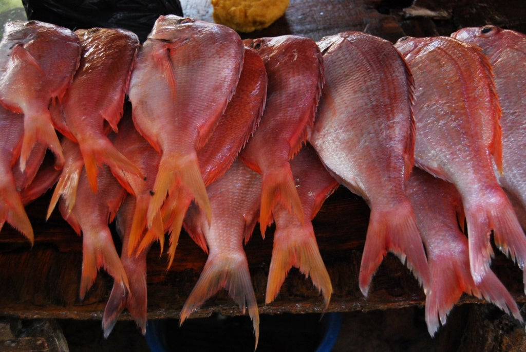 Mercado do Peixe, Maputo