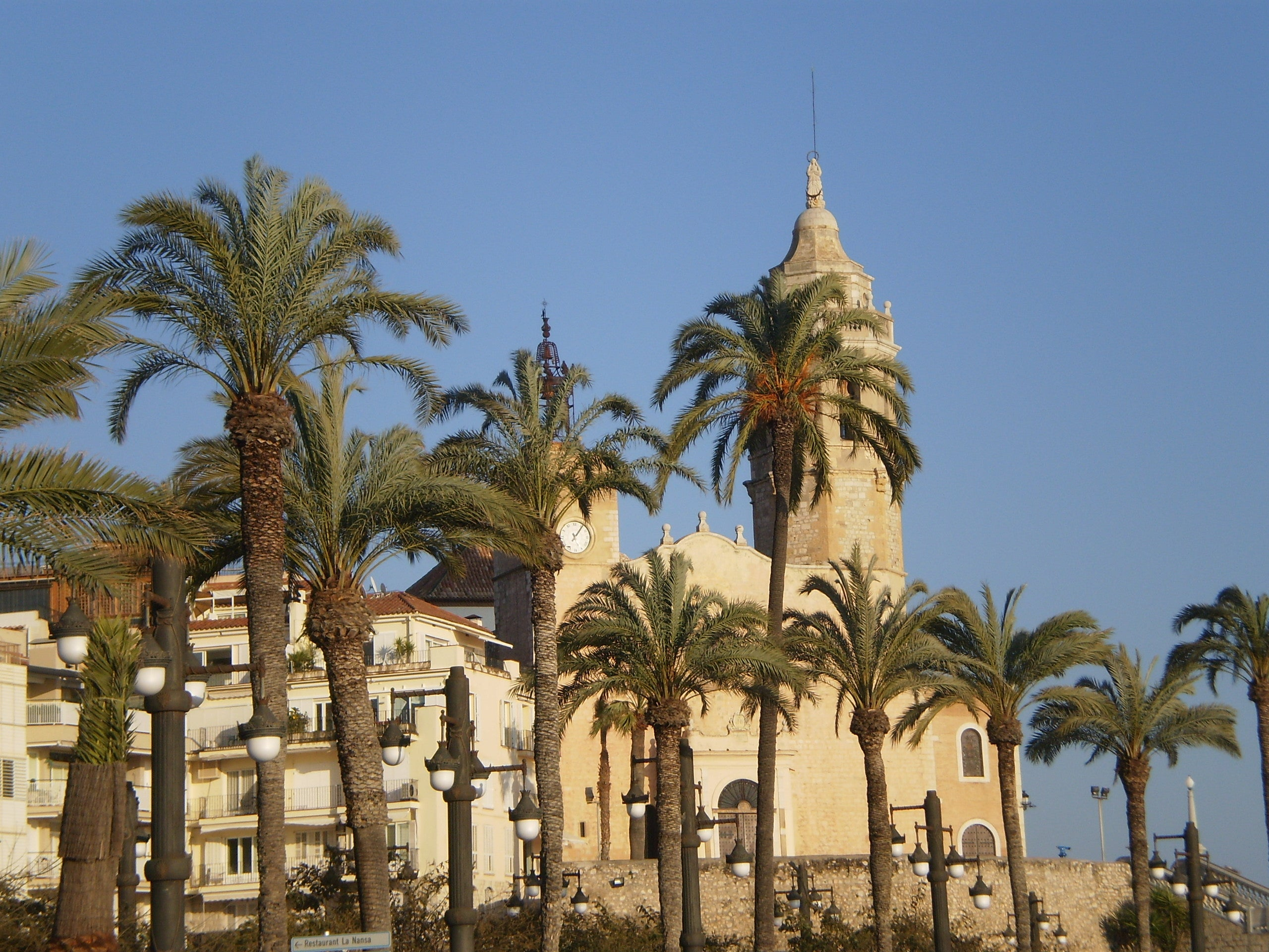 Palm Family in Sitges