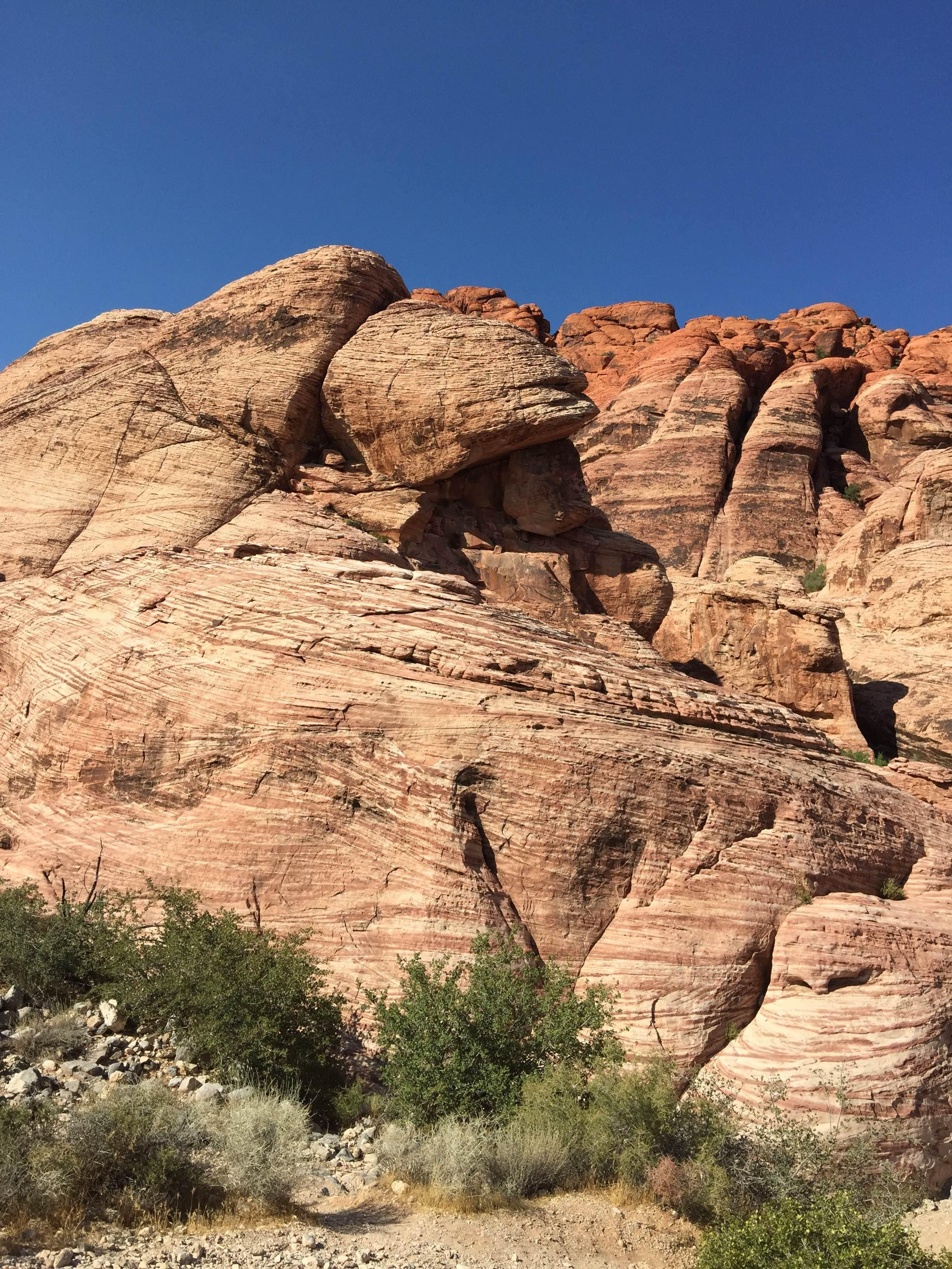 Roca en Red Rock Canyon National Conservation Area