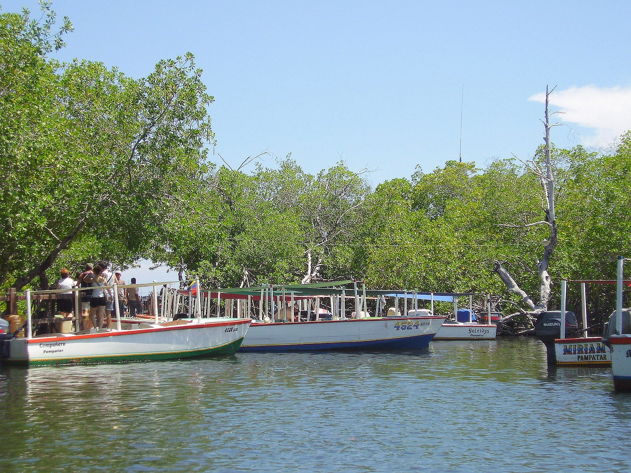Pier of Indio Marín