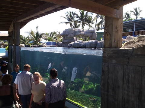 Zoo en Ocean World