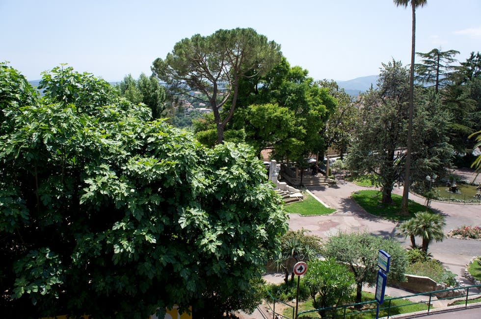 Jardin Des Plantes in Grasse: 1 reviews and 10 photos